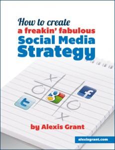 SocialMediaStrategyCover-small-border1-231x300
