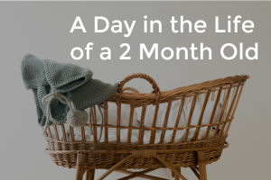 A Day in the Life With a 2 Month Old (2 Month Old Schedule from 2017)